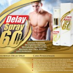 DELAY SPRAY 60 MINUTES